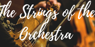 The Strings (1).png